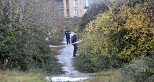 Gardaí are investigating the discovery of a body in  the Balbutcher Lane area of Ballymun.  Photograph: Collins