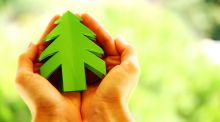 'Quietly emerging trend: the dream of a green Christmas and the notion of making the season more sustainable.' Photorgraph: iStock