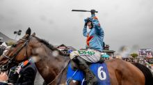 The hugely popular veteran Un De Sceaux is on track for another crack at this Saturday's Tingle Creek Chase at Sandown. Photograph: Morgan Treacy/Inpho