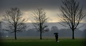 Damp and rainy weather in Dublin's Phoenix Park on November 22nd last. Photograph: Alan Betson / The Irish Times
