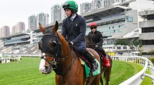Jockey Ryan Moore   rides Anthony Van Dyck   during the trackwork session at Sha Tin Racecourse in   Hong Kong. Photograph: Vince Caligiuri/EPA