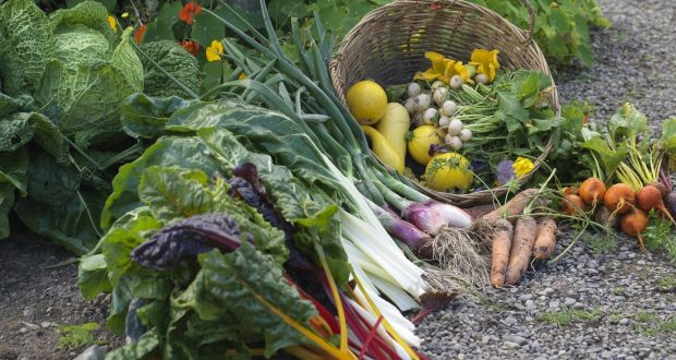Freshly harvested produce in the walled kitchen garden of Burtown House in Co Carlow. Photograph: Richard Johnston