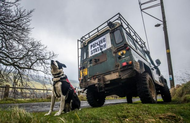 A dog next to a polling station sign in Low Row, Yorkshire, England. Photograph: Danny Lawson/PA Wire
