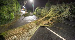 A fallen tree blocking the Ballymoneen Road at Knocknacarra early on Thursday morning following Storm Elsa in Galway. Photograph: Joe O'Shaughnessy