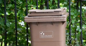 Brown bin in Dublin.  File photo. Photograph: Cyril Byrne