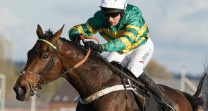 Champ bids to stay unbeaten over fences at Cheltenham on Wednesday. Photograph:  Alan Crowhurst/Getty