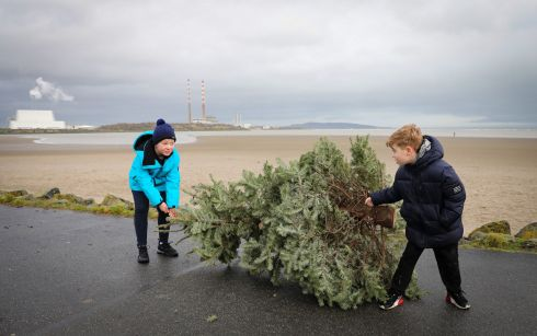 TREE AMIGOS: Harry Whittaker and Alfie Kane drag their Christmas tree to the disposal facility on Sandymount's Strand Road. Photograph: Crispin Rodwell/The Irish Times