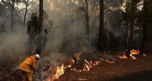 A firefighter works to contain a small bushfire, which closed the Princes Highway, near Ulladulla, Australia, on Sunday.  Photograph: Dean Lewins/EPA