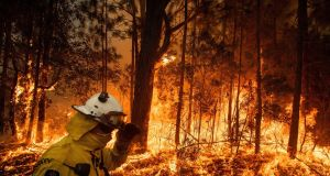 Even before the latest fires, Deloitte estimated that the economic costs to Australia of natural disasters would rise to 39 billion Australian dollars (€24.2 billion) a year by 2050, equivalent to almost 2 per cent of the country's current GDP