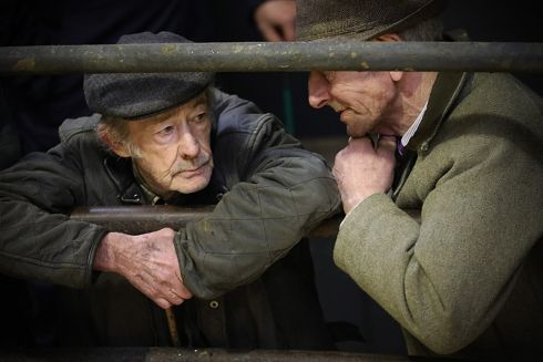 ART OF THE DEAL: Old pals Brendan Tully and Paddy Curran discuss the selling of cattle at Ballyjamesduff Mart, Cavan, on Tuesday afternoon. Photograph: Lorraine Teevan