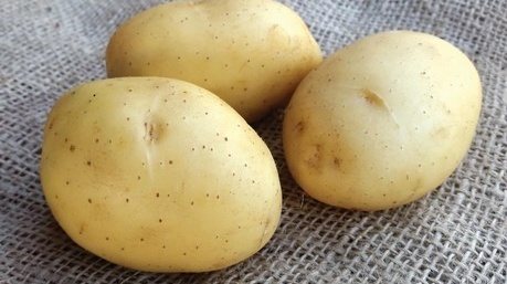 Who doesn't love the taste of homegrown potatoes?