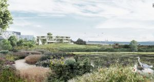 An artist's impression of the proposed interpretative centre and spa shows Booterstown bird sanctuary in the foreground.