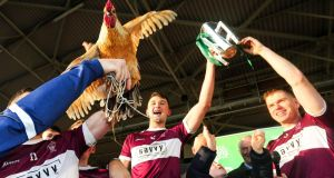 Paddy the cockerel joins in celebrations  after    Borris-Ileigh's victory over Kiladangan in the Tipperary SHC Final at Semple Stadium back in November. Photograph: Lorraine O'Sullivan/Inpho