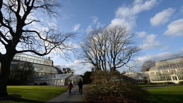 The National Botanic Gardens, in Glasnevin, Dublin. O'Connor designed the visitor centre and herbarium at the site as well as restoring its Great Palm House. File photograph: Dara Mac Dónaill