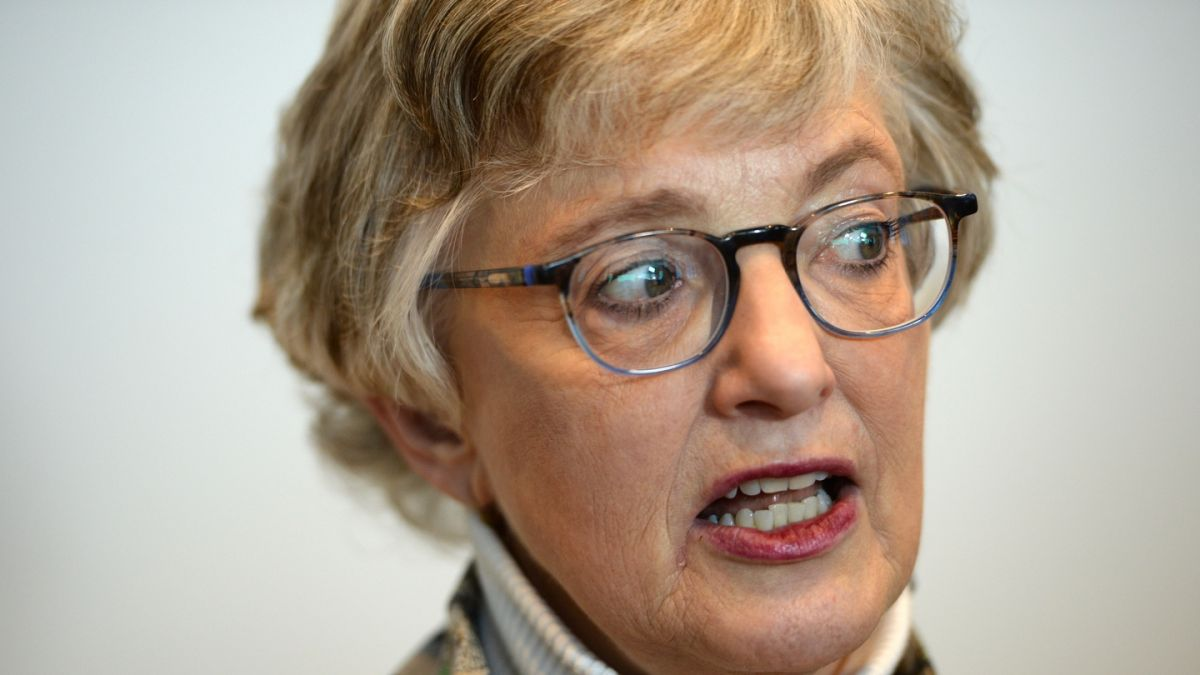 Dublin south west election contest a 'challenge', says Zappone