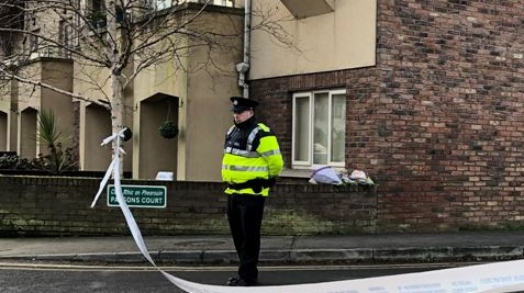 A garda at the scene at Parson's Court, Newcastle, Co Dublin where the bodies of Conor (9), Darragh (7) and Carla McGinley (3) were discovered in a house on Friday night. Photograph: Sarah Burns