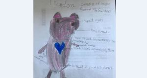 A detailed drawing of the missing pig teddy, Theodora, drawn by her 'distraught' owner Imogen.