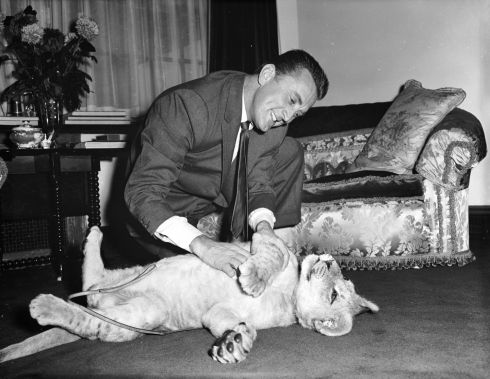 Kirk Douglas with a lion cub called Spartacus, which was presented to him in December, 1960,  by the director of Southport zoo in appreciation of Douglas's film role. Photograph: Lee/Central Press/Getty Images