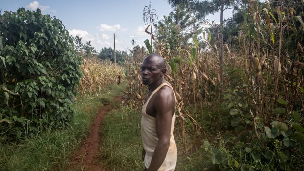 Bernard Mwaura, a farmer in Kenya's Muranga county: government workers came to spray pesticide soon after he phoned them for help with the locusts. Photograph: Sally Hayden