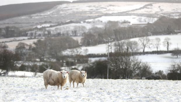 Snow-covered fields in Kilteel, Co Kildare, on Tuesday. Photograph: Niall Carson/PA Wire