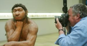 A reconstruction of a Neanderthal   displayed at the Prehistoric Museum in Halle, eastern Germany. Photograph: Sebastian Willnow/AFP/Getty Images