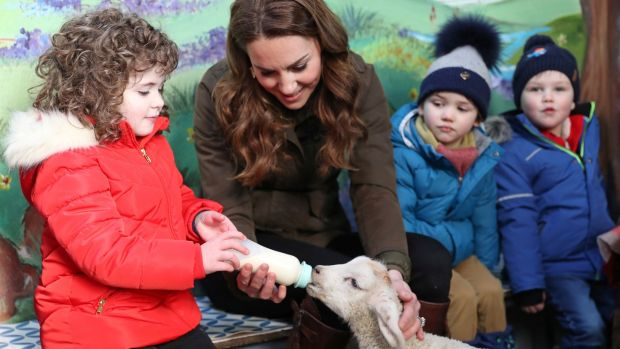 The Duchess helps a child feeding a lamb at the Ark Open Farm in Newtownards. Photograph: Chris Jackson/Reuters
