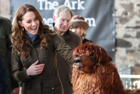 Catherine, Duchess of Cambridge has an encounter with an Alpaca during a visit to The Ark Open Farm in Newtownards, Northern Ireland, 12 February 2020. This visit is part of her Early Years Foundation Survey. Five Big Questions, aiming to spark a UK-wide conversation on early childhood.  Photograph : Chris Jackson / Pool