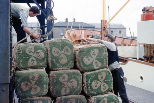 Dockers prepare Irish peat moss for loading on to a ship. Photograph: Dublin Port Company Archive