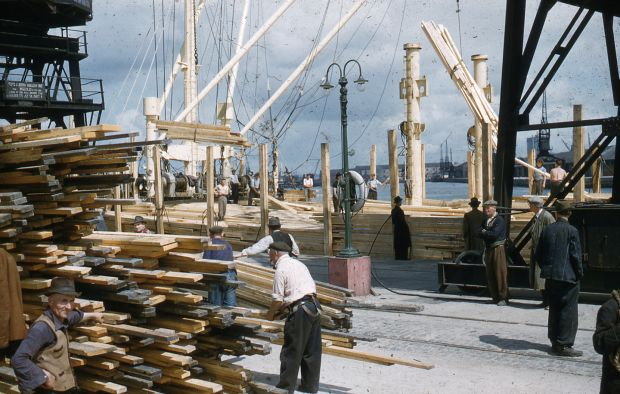 Wood from Finland being unloaded at Dublin Port. Photograph: Dublin Port Company Archive