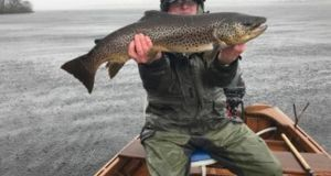 Gerry Molloy with a magnificent 12lb trout caught on opening day on Lough Corrib which he sportingly released