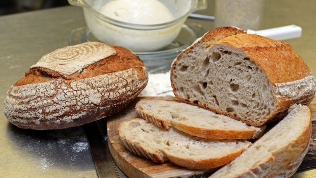 Sourdough you can make at home, in a casserole dish