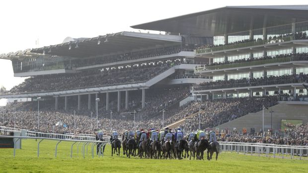 A view of the grandstand at Cheltenham. Photograph: Inpho