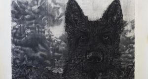 Gary Coyle, The Black Dog, Kevin Kavanagh Gallery
