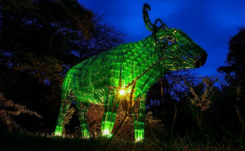 'Nyati' the Buffalo statue, made from re-cycled Tusker glass bottles, is seen during Tourism Ireland's annual Global Greening initiative, to celebrate the island of Ireland and St Patrick, in Nairobi, Kenya.