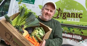 Beechlawn Organic  Farm co-founder Pádraig Fahy with a box of vegetables for delivery. Photograph: Joe O'Shaughnessy