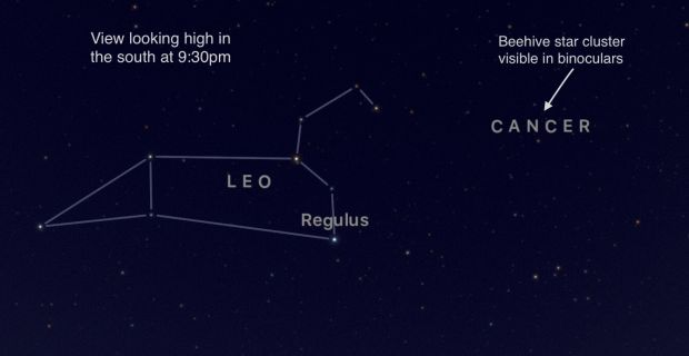 The constellation of Leo. Photograph: Sky Guide app
