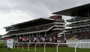A packed Cheltenham grandstand during Wednesday of the 2020 Festival. Photograph: Dan Sheridan/Inpho