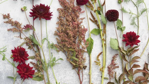 Grow your own: ingredients for a homegrown bouquet including amaranthus, dahlias, orach and comsos. Photograph: Richard Johnston