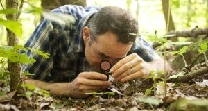 'Ramble' blogger David Haskell getting up close and personal with the square metre of forest floor he observed over 12 months. Photograph: Buck Butler