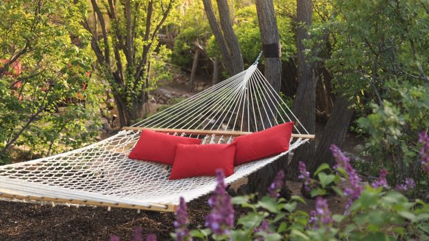 The best gardens have overgrown places in which to sling a hammock. Photograph: Getty