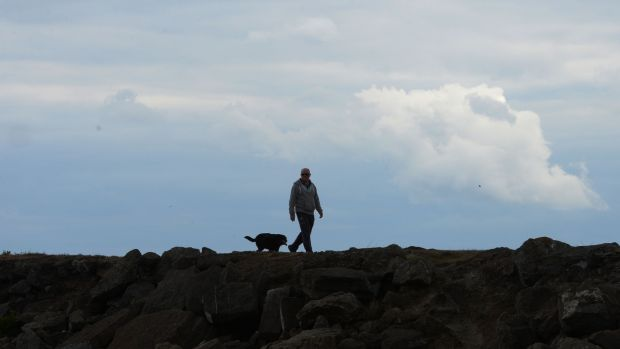 Walking a dog at the Dollymount end of the beach. Photograph: Alan Betson
