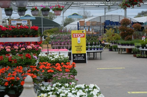 A sign in the garden centre asking people to stop and sanitise their hands. Photograph: Alan Betson/The Irish Times