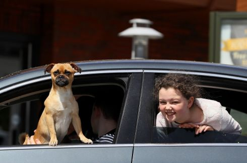 PUG LIFE: Ziggy, a Jack Pug, and Layla Boyce (11) queuing for a drive-through meal at McDonald's at the Artane Castle shopping centre, Dublin. Ziggy was ordered a double cheese burger. Photograph: Brian Lawless/PA Wire