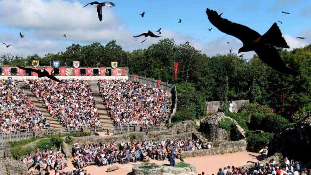 Performing birds in 2018 during a show at Le Puy du Fou, in Les Epesses, western France. File photograph: AFP/Getty
