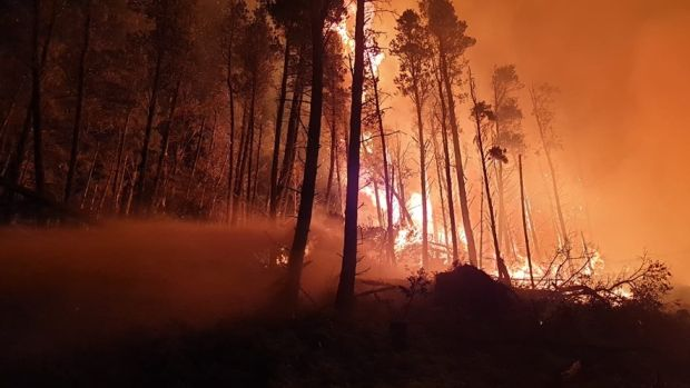 Forest fire rages across Cooley Peninsula in Co Louth on Sunday night. Photograph: Coillte