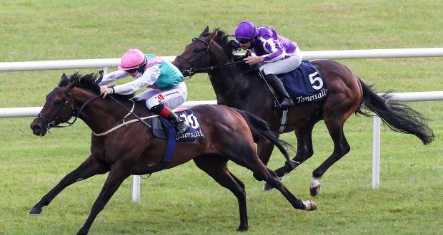 irish 2000 guineas betting 2021 gmc