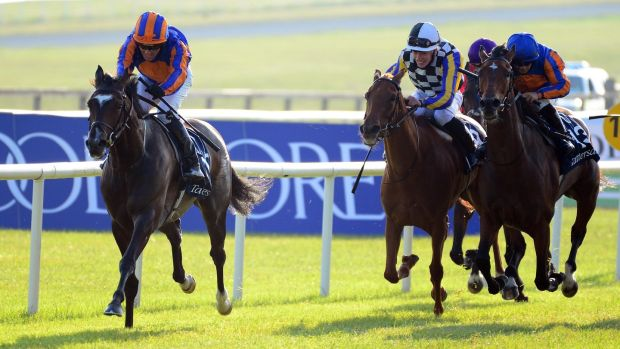 Irish 1000 guineas 2021 betting websites spread betting tax free australia