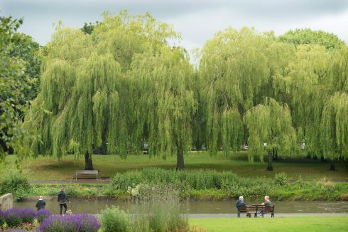 WILLOWS BY THE RIVER: People sit by the Tolka River in Griffith Park, Dublin. Photograph: Dara Mac Dónaill/The Irish Times