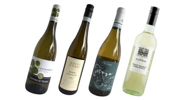 These light Italian white wines work well with salads or plain fish dishes, or simply to sip before dinner
