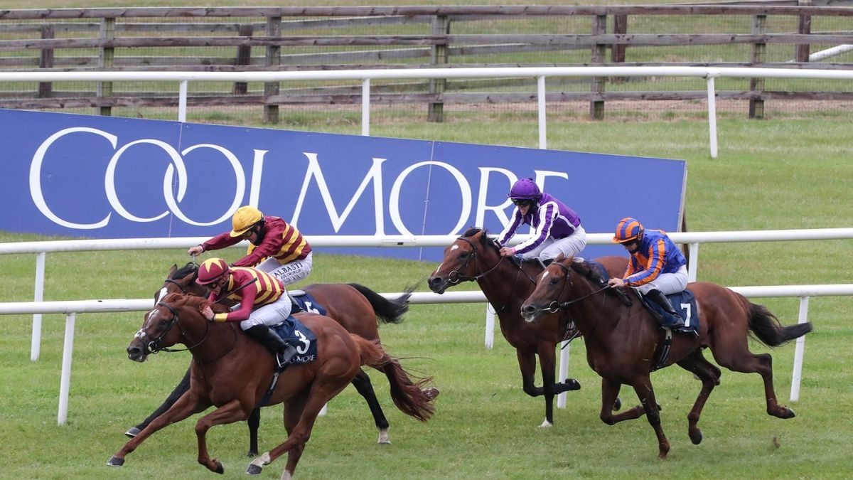 Irish 1000 guineas betting 2021 movies nfl football betting spreads